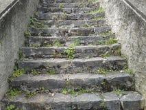 Каменные лестницы Стоковая Фотография