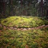 Каменные круги Стоковые Изображения