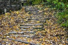 Каменные лестницы с листьями осени Стоковое Изображение RF