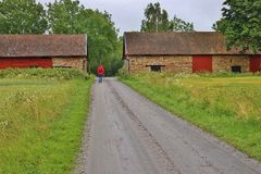 Каменные дома в Швеции, Европе Стоковая Фотография RF