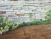 Каменные стены стоковое изображение