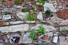 Каменные стены стоковые изображения