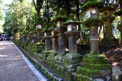 Каменные фонарики в парке Nara, Японии Стоковые Изображения