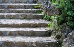 Каменные шаги в старый парк Стоковые Изображения RF