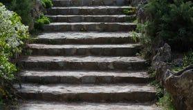 Каменные шаги в старый парк Стоковая Фотография RF
