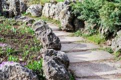 Каменные шаги в старый парк Стоковые Фото