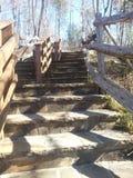 Каменные шаги идя вверх Стоковые Фотографии RF