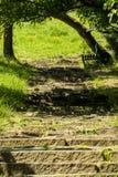 Каменные шаги лестницы стоковое изображение