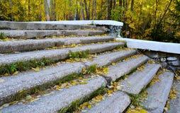 Каменные шаги старой лестницы в осени ` s города паркуют Стоковая Фотография RF