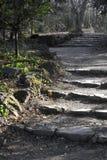 Каменные шаги Стоковое фото RF