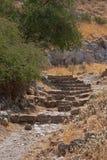 Каменные шаги. Стоковое Изображение RF