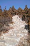Каменные шаги Стоковая Фотография
