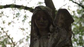 Каменный ангел на кладбище сток-видео