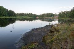 Каменный берег и дно озера говорят жестких условий жизни заводов Стоковые Изображения RF