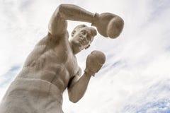 Каменный боксер человека Стоковое Изображение