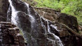 Каменный водопад в водопаде леса горы на скалистой горе акции видеоматериалы