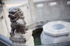 Каменный лев Стоковое Изображение