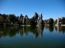 Каменный лес Стоковые Изображения