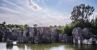 Каменный лес Стоковое Изображение