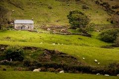 Каменный коттедж в стране Графство Donegal Ирландия стоковые изображения rf