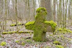 Каменный крест в лесе Стоковая Фотография RF