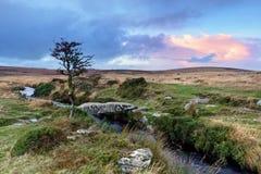 Каменный мост колотушки на Dartmoor стоковые фотографии rf