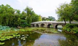 Каменный мост Стоковые Фото
