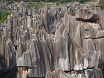 Каменный национальный парк леса Стоковое Изображение RF