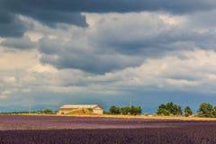 Каменный дом в лаванде поля Стоковая Фотография