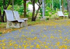 Каменный парк стенда публично и желтый цветок Стоковая Фотография RF