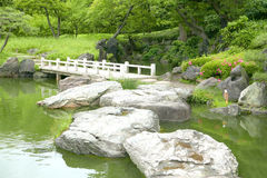 Каменный пруд моста и воды в японском Дзэн садовничает Стоковое Изображение RF