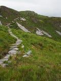 Каменный путь водя вверх по холму диаманта в Ирландии Стоковые Фотографии RF