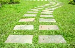 Каменный путь в зеленой траве Стоковые Изображения RF