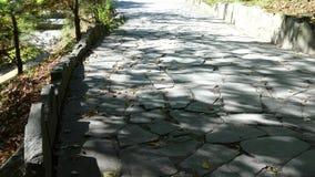 Каменный путь прогулки блока в парке с предпосылкой зеленой травы Вымощая плиты с травой Striped булыжник стоковое изображение rf