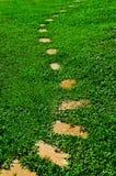 Каменный путь прогулки блока в парке Стоковые Изображения RF