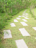 Каменный путь прогулки блока в парке с предпосылкой зеленой травы в Таиланде Стоковое фото RF