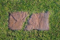 Каменный путь прогулки блока в парке с предпосылкой зеленой травы Стоковое фото RF