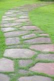 Каменный путь прогулки блока в парке с backgroun зеленой травы Стоковое фото RF