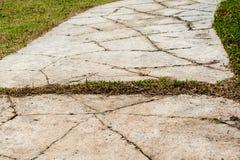 Каменный путь прогулки блока в парке с backgroun зеленой травы Стоковое Изображение RF