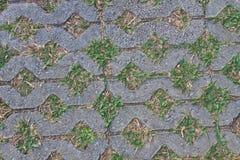 Каменный путь прогулки блока Стоковая Фотография RF