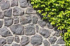 Каменный путь   стоковые изображения rf