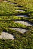 Каменный путь через траву Стоковые Изображения RF