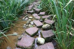 Каменный путь стоковая фотография