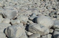 Каменный пляж стоковое изображение rf