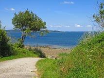 Каменный пляж Finistere Бретань Стоковые Изображения RF