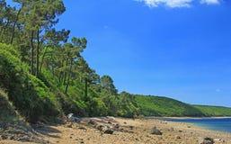 Каменный пляж Finistere Бретань Стоковые Фото