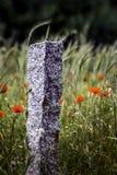 Каменный столб Стоковые Изображения RF