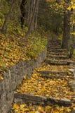 Каменный след шага в осени Стоковые Фотографии RF