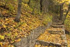 Каменный след шага в свежей осени Стоковое Изображение
