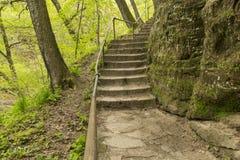 Каменный след шага Стоковое Фото
